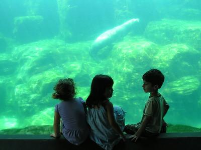 Mars and Claudia aquarium visit